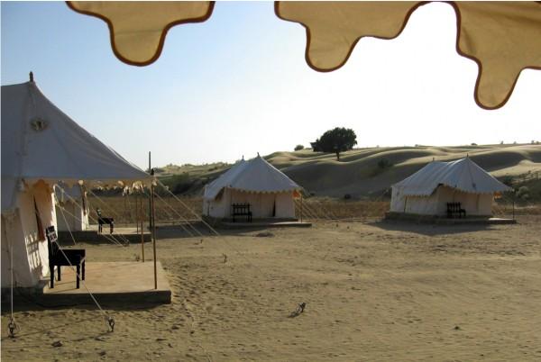 Nuit Magique Dans le Desert